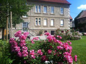 Landhaus im Sommer mit rosa Rosenbusch