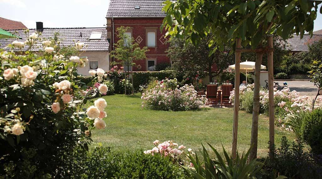 Sitzgruppe steht im Garten umrandet von rosa Rosenbüschen